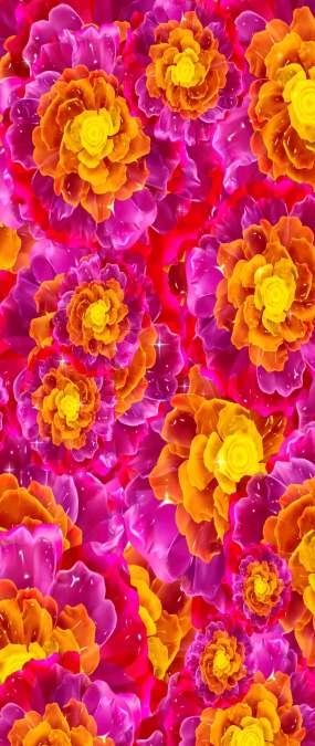 天幕牡丹花背景视频素材视频素材