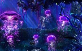 VJ-SL-森林水母视频素材包