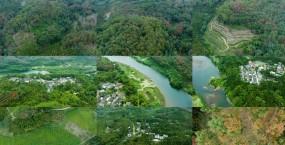 航拍树林视频素材