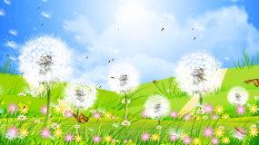 蓝天白云唯美大自然蒲公英背景视频视频素材