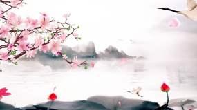 恋人-魏新雨配乐成品视频素材