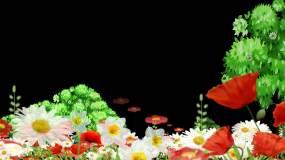 春天花丛透明通道视频素材包