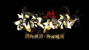 武汉加油金属文字视频素材