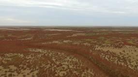 红地毯核心区视频素材
