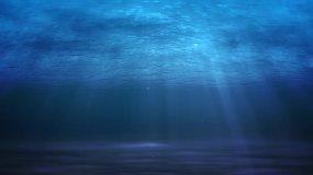 高清海底视频素材