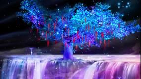 奇幻树视频素材