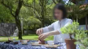 泡茶茶艺视频素材包