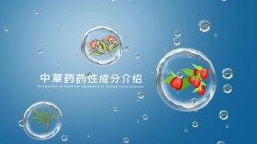 水滴中草药介绍图文展示AE模板