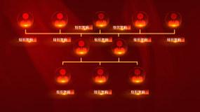 组织架构字幕AE模板AE模板