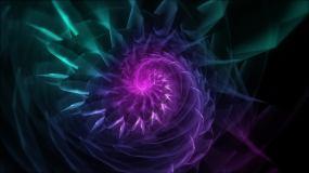 抽象花旋转-2视频素材