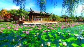 戏曲花园荷花亭台三维动画视频素材