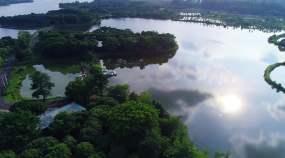 松山湖园艺博览中心视频素材