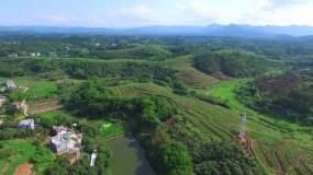 航拍山村荔枝种植基地荔枝园荔枝林视频素材