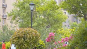 4K小区空镜-楼盘住宅房产-楼市绿化视频素材