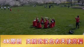 抗疫英雄赏樱(附樱花少量素材)视频素材