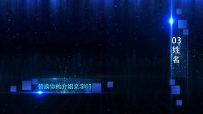 人物介绍图文展示0526(B)AE模板