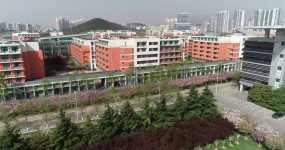 4k航拍中国石油大学青岛校区樱花视频素材