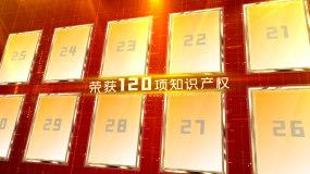 紅色黨政金色豎版證書專利AE模板