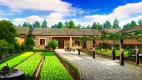 新农村家园菜地小院循环背景-1视频素材