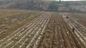 航拍农村农民丰收视频素材