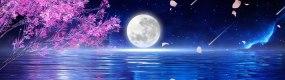 【宽屏】唯美梦幻海面月亮升起视频素材