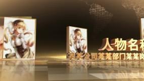 金色人物颁奖包装AE模板