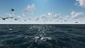4K海面天鹅海鸥流云视频素材