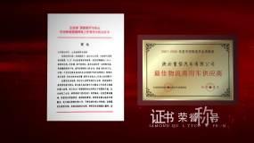 红色党政图文证书荣誉展示AE模板AE模板
