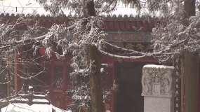 实拍仙人洞雪景,雪地行者背影视频素材