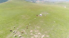 草原人家视频素材