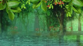 梦幻的森林屏幕背景视频素材