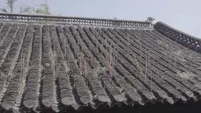 扬州-6视频素材