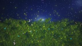 草地夜空蝴蝶飞舞2视频素材