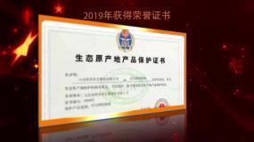 党政荣誉证书AE模板