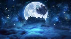 星空月夜树下【4K分辨率循环】视频素材