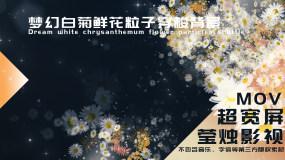 【大屏】梦幻白菊鲜花粒子穿梭背景视频素材