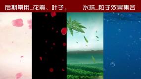 花瓣粒子效果_工具包AE模板