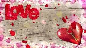 4K爱情主题告白背景循环视频素材