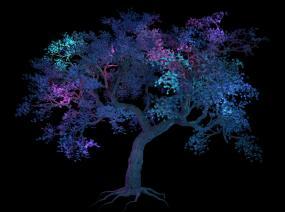 夜景景观树02视频素材