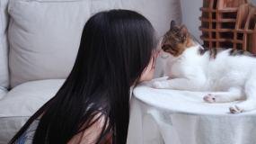 美女和猫居家室内,宠物萌宠逗猫4k视频视频素材