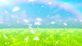 4K蓝天白云绿草地风吹麦浪蒲公英飞舞视频视频素材