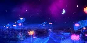 极品荷花透明荧光炫丽蓝色阿凡达风格视频素材