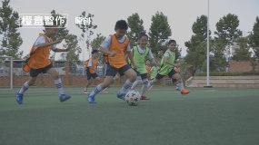 学校体育文化活动视频素材视频素材包