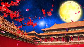 汉宫秋月中国风古建筑月亮花瓣LED视频视频素材