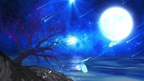 梦幻星空湖面流星雨大树蝴蝶飞舞LED背景视频素材
