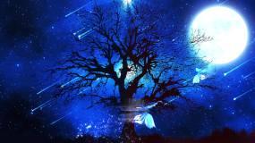 梦幻星空粒子流星雨大树蝴蝶飞舞LED背景视频素材