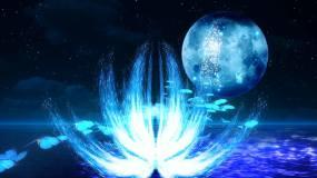 全息粒子嫦娥美景2视频素材