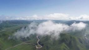 若尔盖草原穿云河流牛羊马群航拍4K视频素材