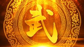中国武术表演演出led大屏背景视频素材