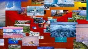 红色党政图片视频汇聚成文字标志定版片尾AE模板